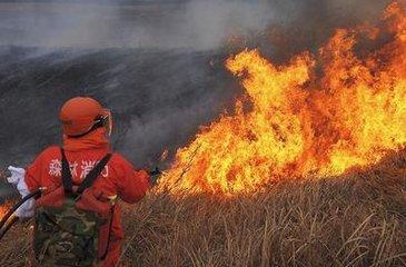 答:扑救森林火灾一般采用直接灭火和隔离带灭火两种方法相结合的灭火